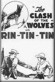 Clash of the Wolves